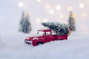 Toy car carrying tree after curbside pickup