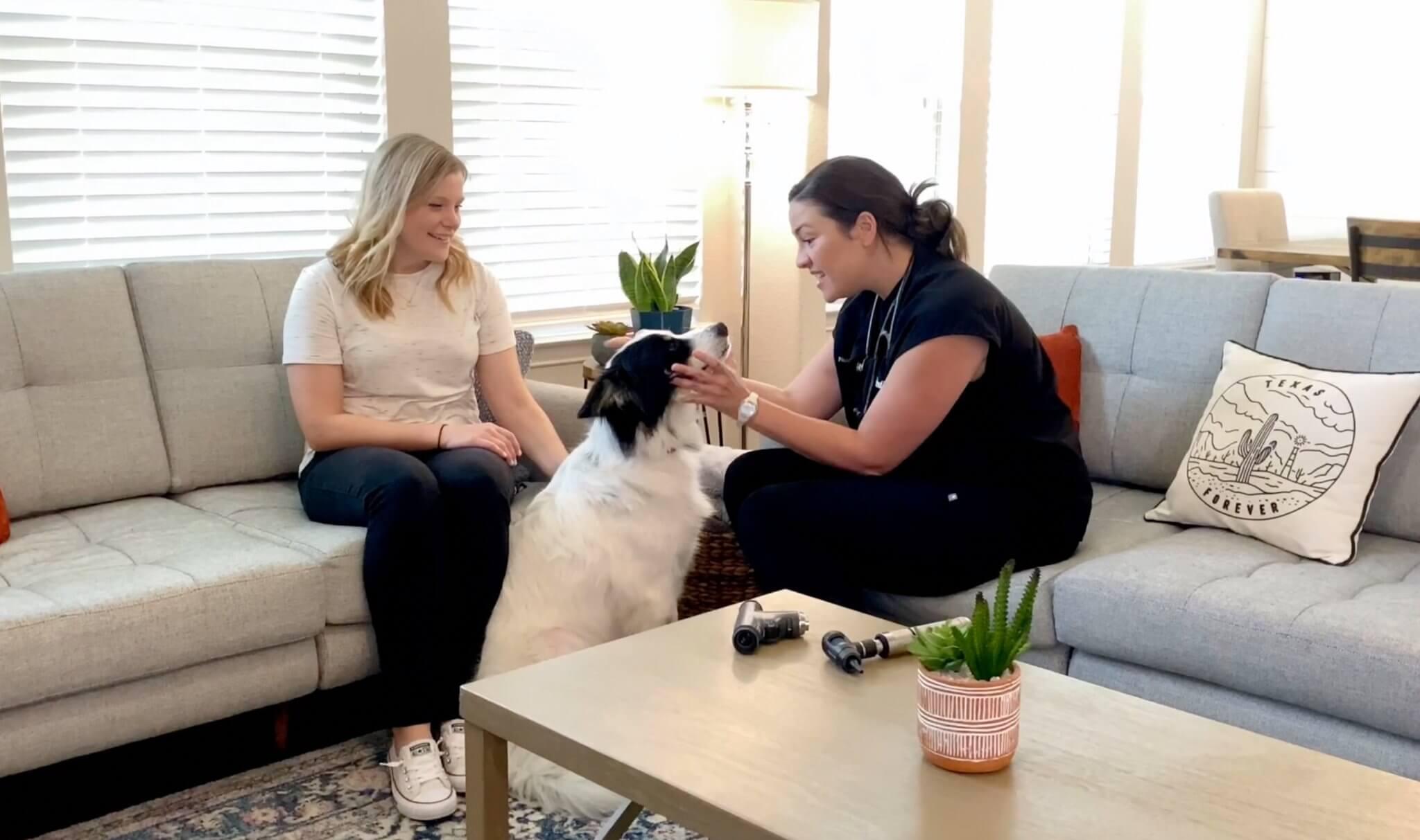 A ReadiVet veterinarian visits a pet patient's home in Dallas.